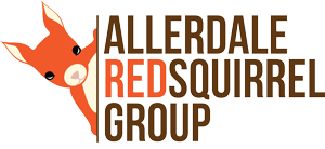 Allerdale Red Squirrel Group
